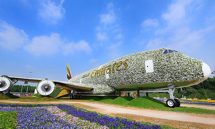 flowerplane_base