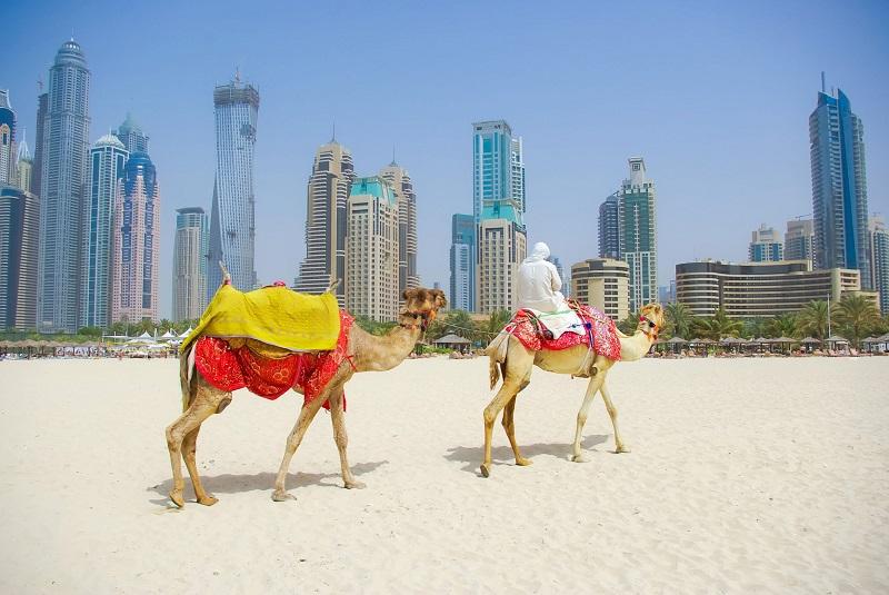 قانون کار در دبی
